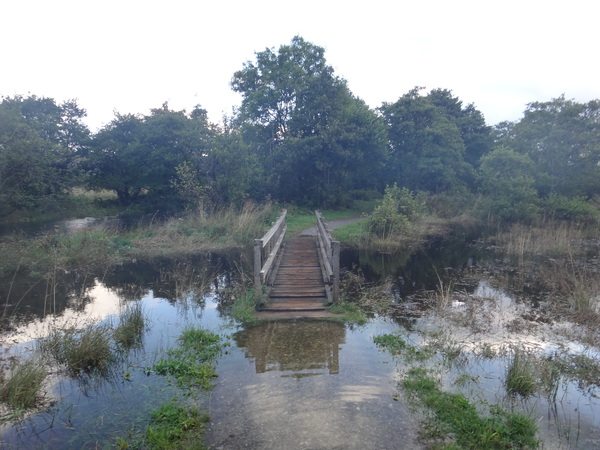 A flooded footbridge.
