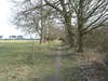 The path leading towards Rendlesham Forest.