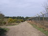 The path beside the fence of RAF Woodbridge.